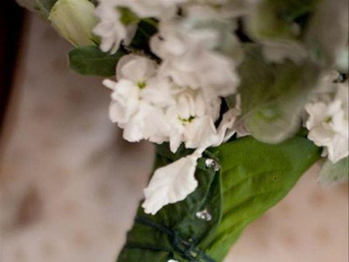Tmx 1294767293570 130s Narberth, PA wedding florist