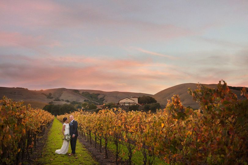 Newlyweds in the vineyard