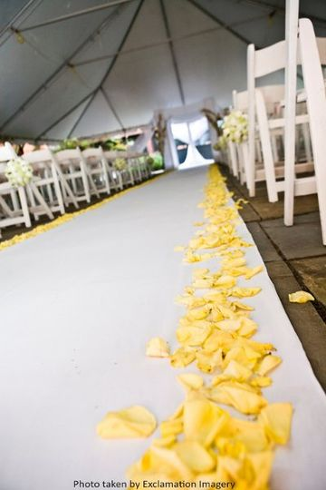 Yellow petals | Photo Credit: Exclamation Imagery, Laura Scheidt