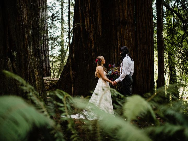 Tmx Ali Eli Jedediah Smith Redwoods Oregon Coast Elopement 115 51 606197 157380006479178 McKinleyville wedding planner