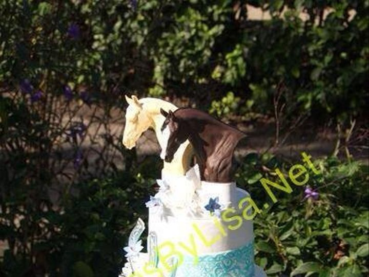 Tmx 1430947475175 10569020690584324361018503764774818874706n Ocala wedding cake
