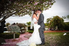 Danversport Weddings