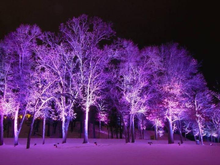 Tmx 1369942576358 Lights Purple Pink Wisconsin Dells, WI wedding venue