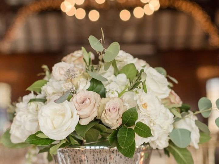 Tmx Image0 2 51 1895297 159068158855416 Fairhaven, MA wedding florist