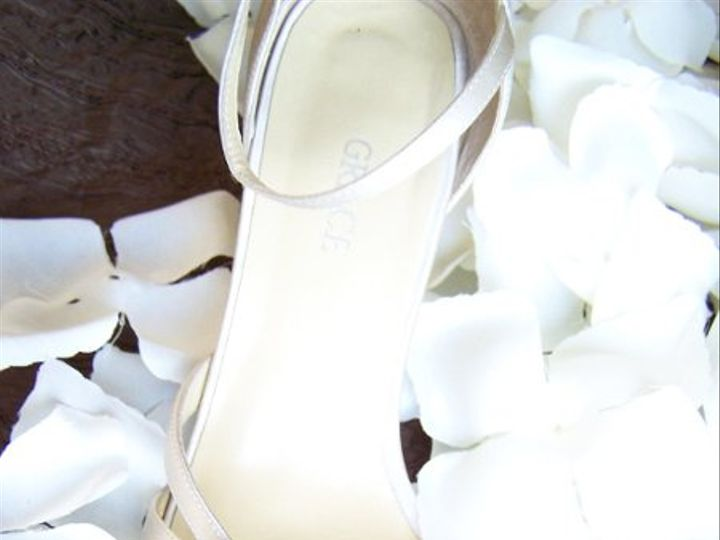 Tmx 1242325232140 LPFBridalShoe Hershey wedding planner