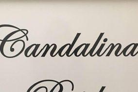 Candalina Brides