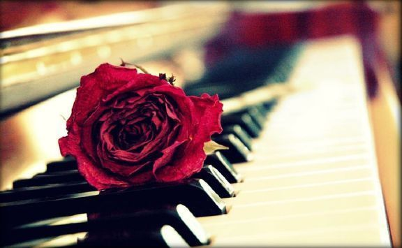 ea331d218c8b8012 red rose piano