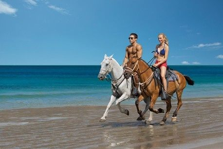 Tmx 1435693683310 Drelmexthorsebackridingbeach1 458x305 Lenexa wedding travel