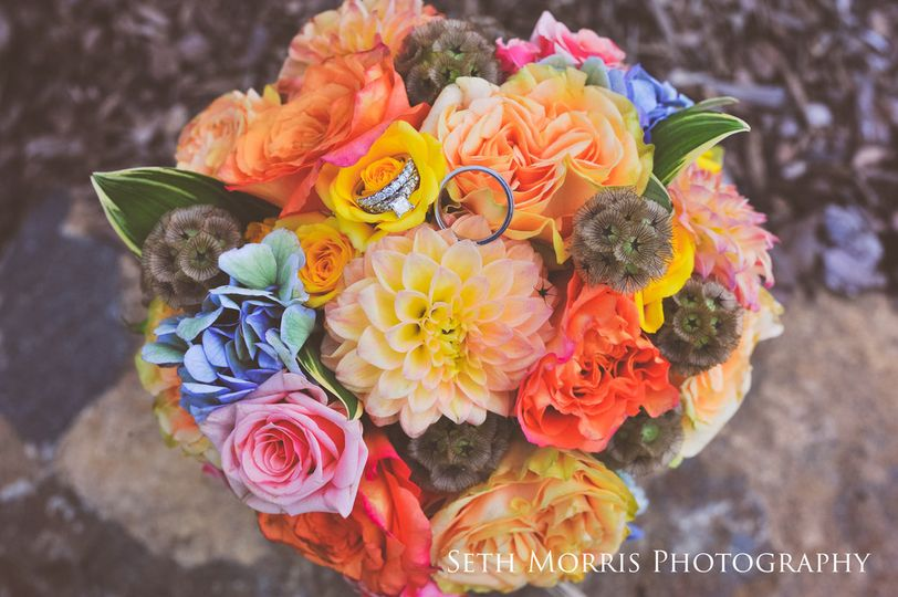 Colorful flowers | Seth morris photography
