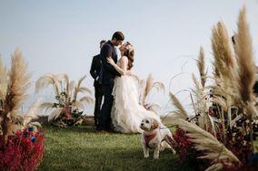 Camilla - via fontana 30 - wedding planner and designer