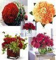 Tmx 1227917376500 Carnations Cherry Hill wedding planner