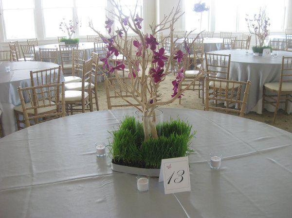 Tmx 1280919889059 MMWedding72310005 Cherry Hill wedding planner