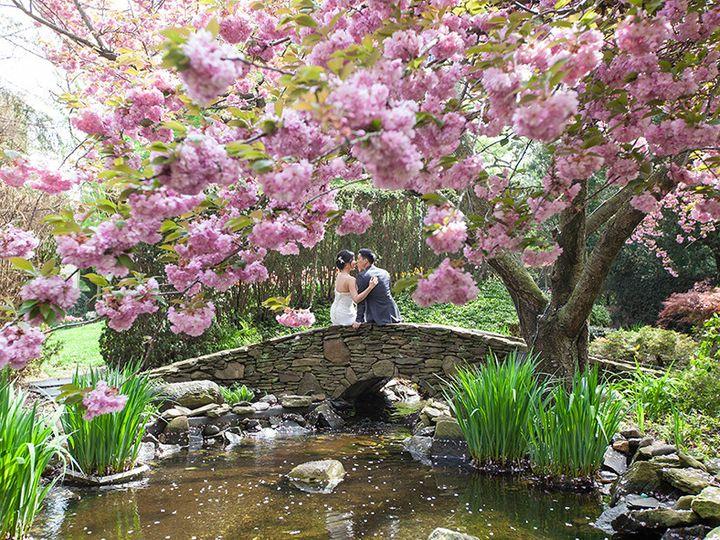 Tmx 1414701597485 291 New York, NY wedding photography