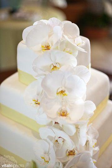 Casereccio Cakes