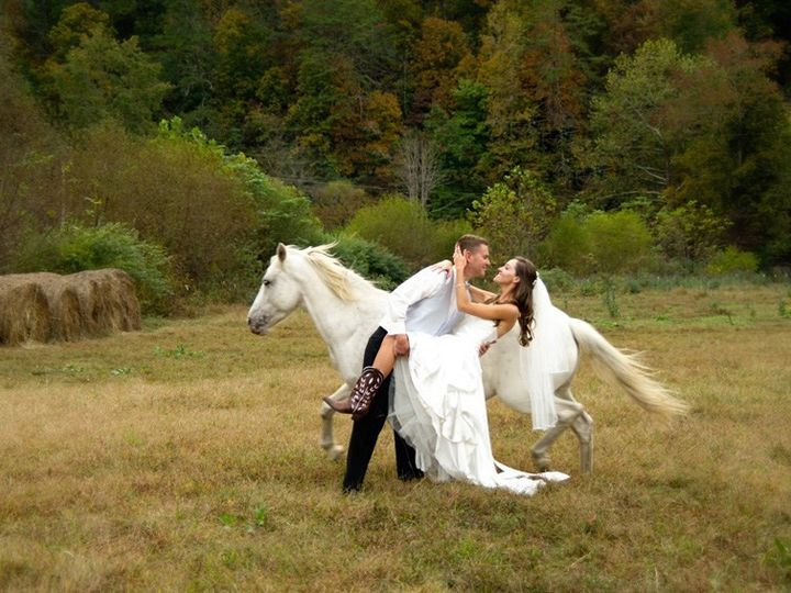 Tmx Wedding Horse 2 51 1893797 157807459342065 Stuarts Draft, VA wedding dj