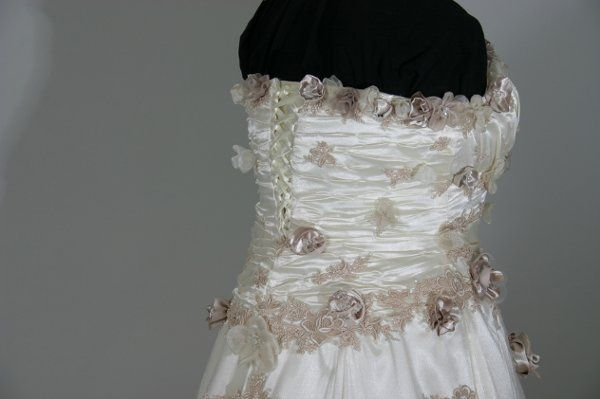 Tmx 1270560716977 IMG0083 Land O Lakes wedding dress