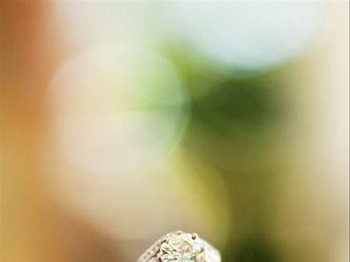 Tmx 1253937191421 IMG48071copy Nashville wedding photography