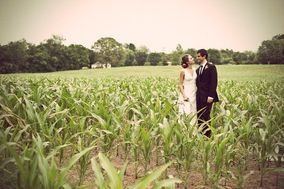 Jacqueline Campbell Weddings
