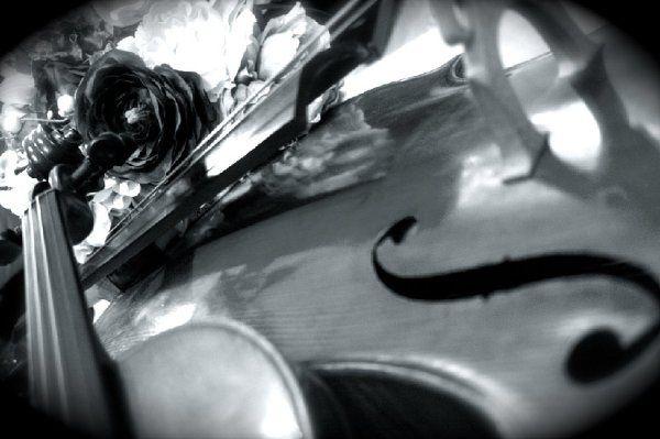 Trio 864