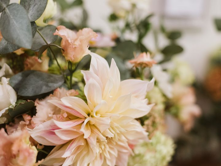 Tmx Img 2409 51 1958997 161042636682404 Spencer, MA wedding florist