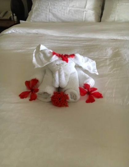 Towels for the guests