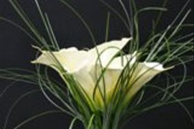 Carter's Florist