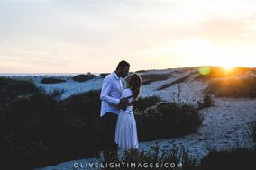 Olive Light Images