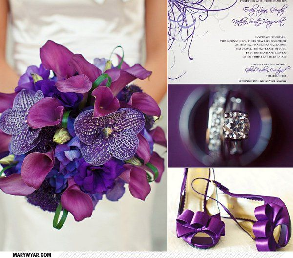 Tmx 1316791485087 272371101502417267460483686624604774493807510200o Toledo, OH wedding planner