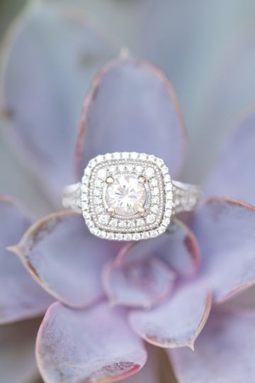 stacey jimmy engagements 90 51 977208 158138499861040