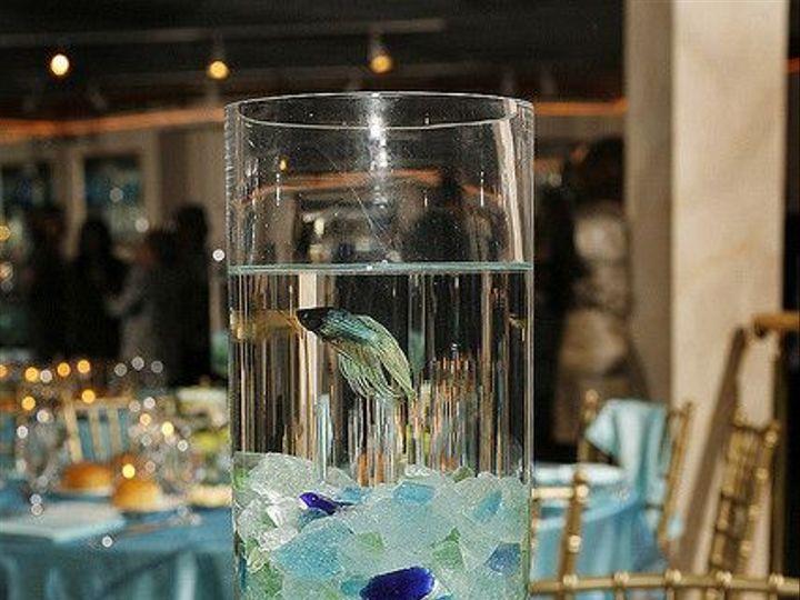 Tmx Floating Fish 51 193308 160978446166575 Lakeville wedding venue