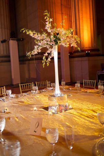 Lovely display of Orchids and amber uplighting
