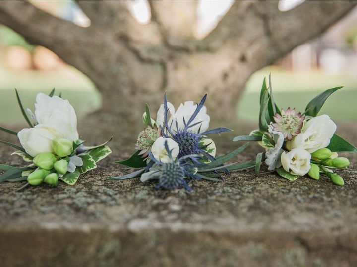 Tmx Ward Nussbaum 2 51 415408 Farmingdale, NY wedding florist