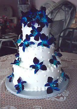 Tmx 1316010630879 4 Saint Petersburg, Florida wedding cake