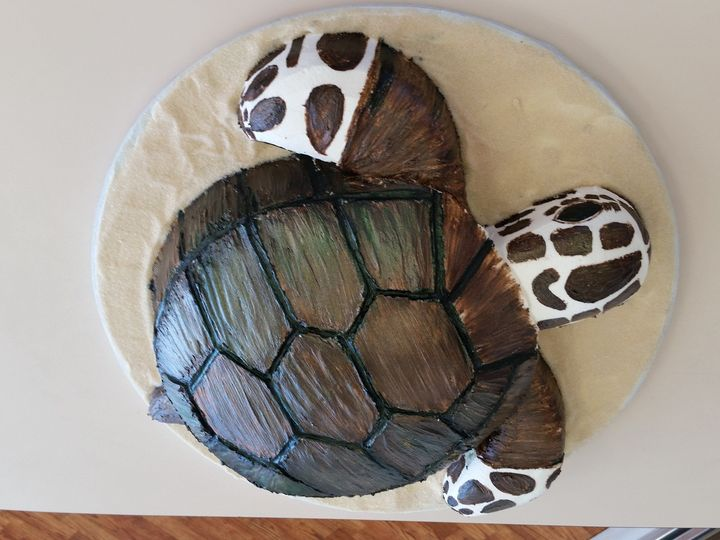 Tmx 1504126766437 Turtle Grooms Cake Saint Petersburg, Florida wedding cake