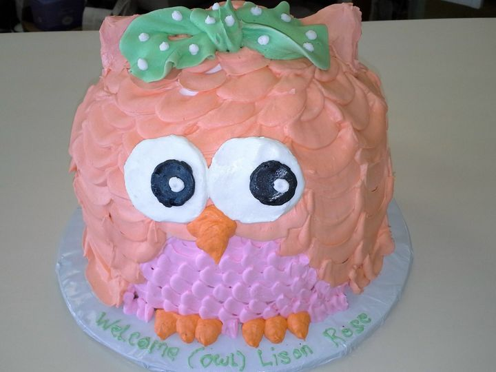 Tmx 1525824100 B26d3f16f67f30b0 1525824098 3664e8503afb9c11 1525824098340 15 Owl Cake Saint Petersburg, Florida wedding cake