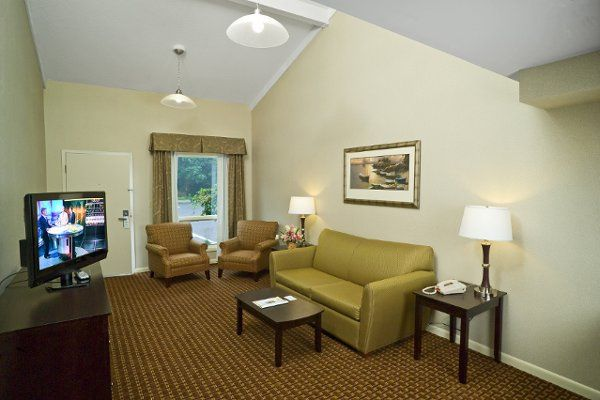 Two Room Suite (Living room with pull-out sofa)