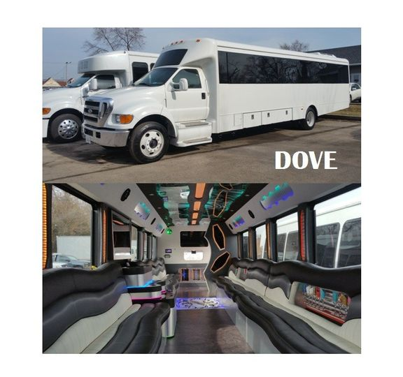 party bus rental dove way to go limousine chicago