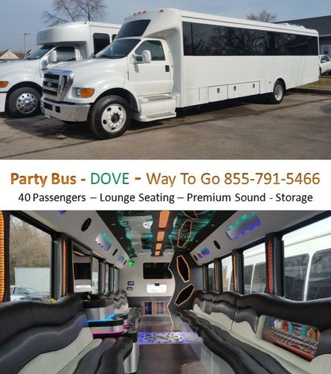 party bus rental chicago way to go limousine