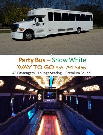party bus rentals chicago way to go limousine