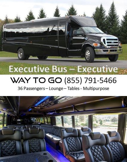party bus rental chicago executive bus way to g
