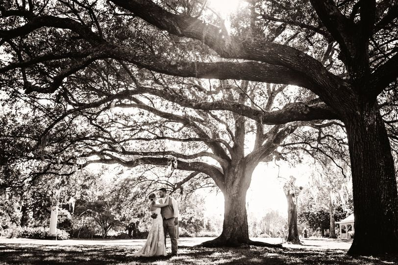Under the trees in Hampton Park