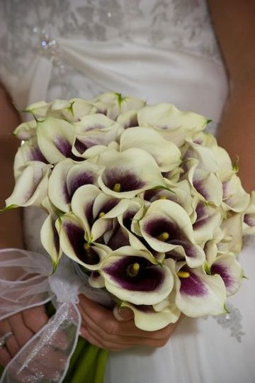 The clean lines of the Picasso callas create a modern, elegant bridal bouquet