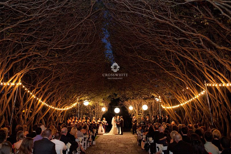 Wedding under a roof of branches