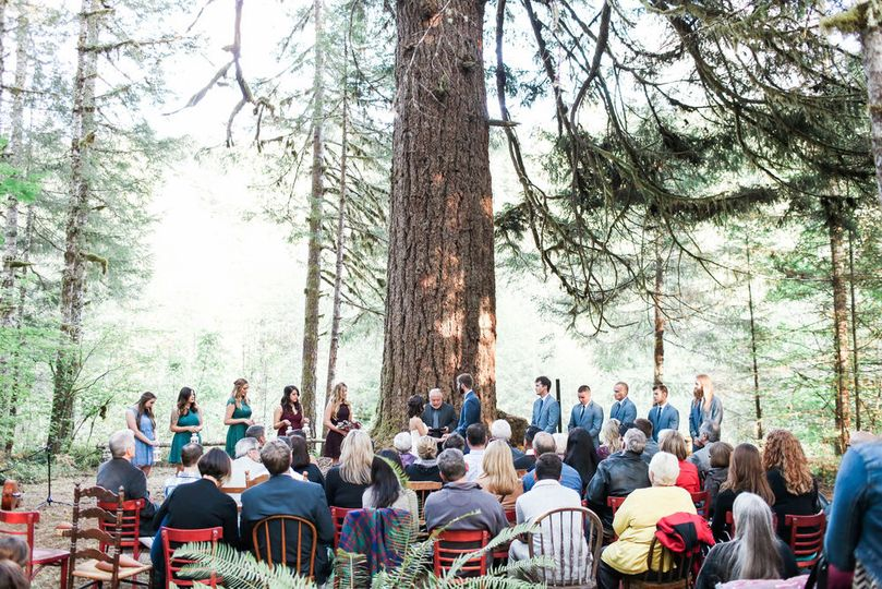 The Old Growth ceremony space