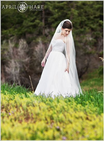 bride portrait at pines at genesee colorado