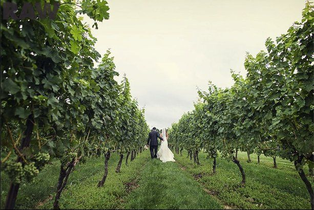 Tmx 1353901416377 Picture149 New Milford, CT wedding dj