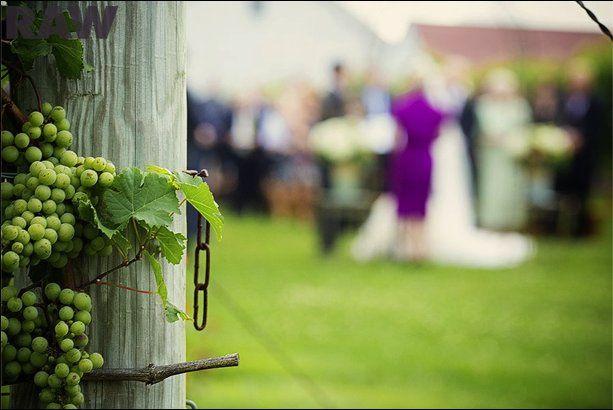 Tmx 1353901420775 Picture150 New Milford, CT wedding dj