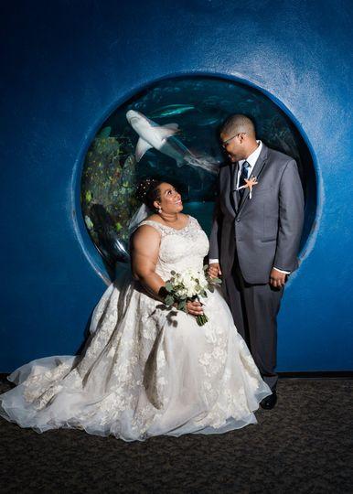Nc aquarium wedding photos