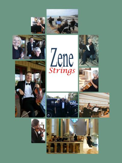 Zene Strings: String Quartets are portable!  We can play anywhere you need music!