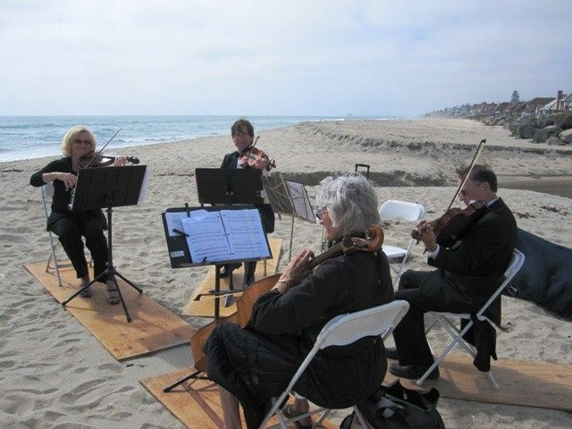Zene Strings: Beach Weddings (and proposals!) are great fun for everyone!